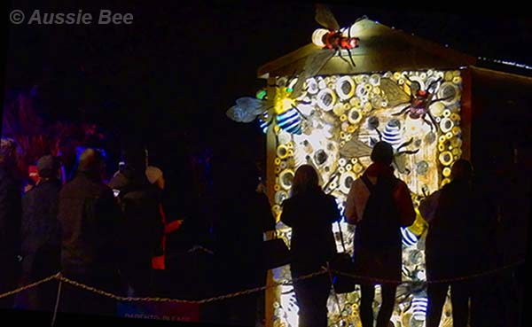 Beetopia, Vivid, Sydney, Bee Hotel for native bees attracts crowds at Botanic Gardens