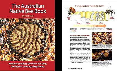 The Australian Native Bee Book by Tim Heard