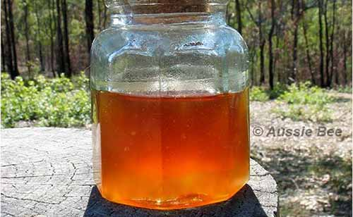 Stingless bee honey