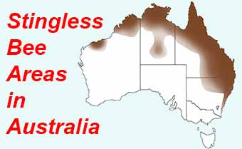 Areas where stingless bees are found in Australia